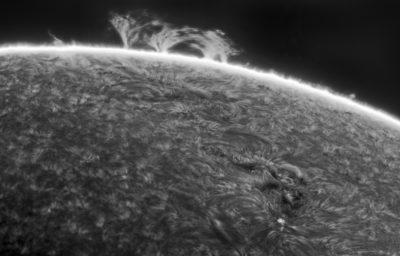 02-06-2021 Lage promenences and sunspot