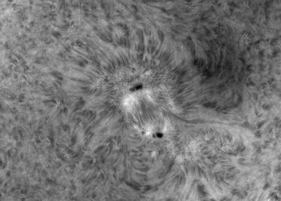 07-06-2021 sunspots